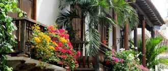 Цветы на балконе: роскошная коллекция ярких идей